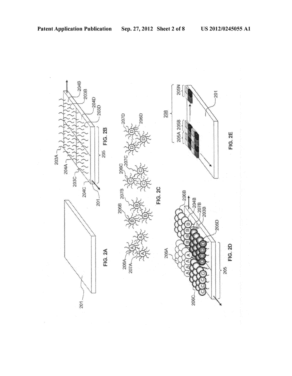 Method for Assembly of Analyte Filter Arrays Using Biomolecules - diagram, schematic, and image 03