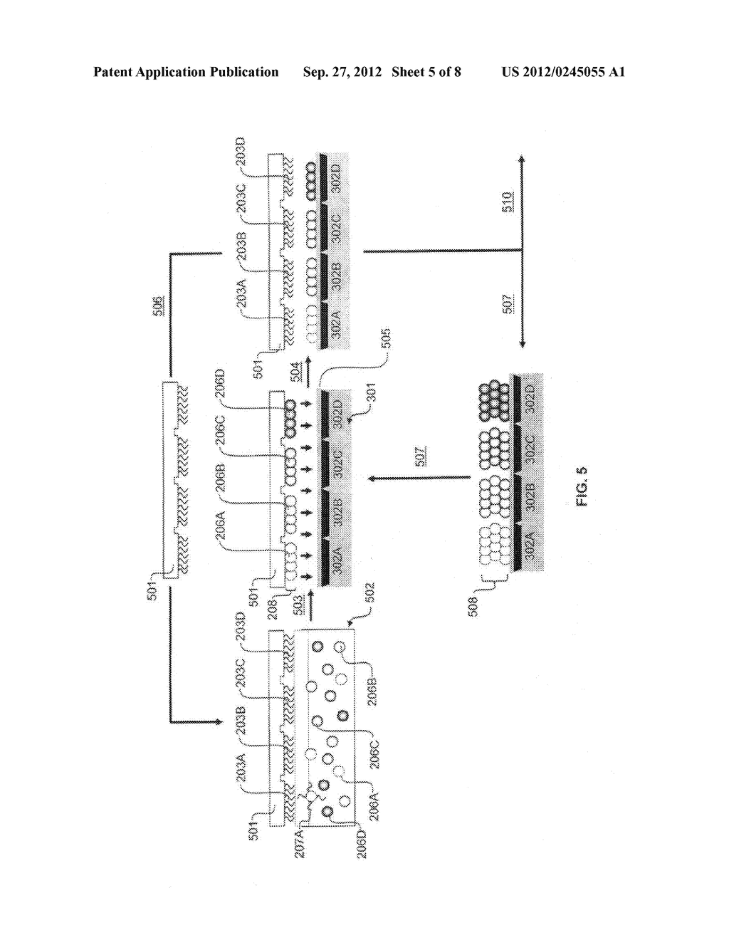 Method for Assembly of Analyte Filter Arrays Using Biomolecules - diagram, schematic, and image 06