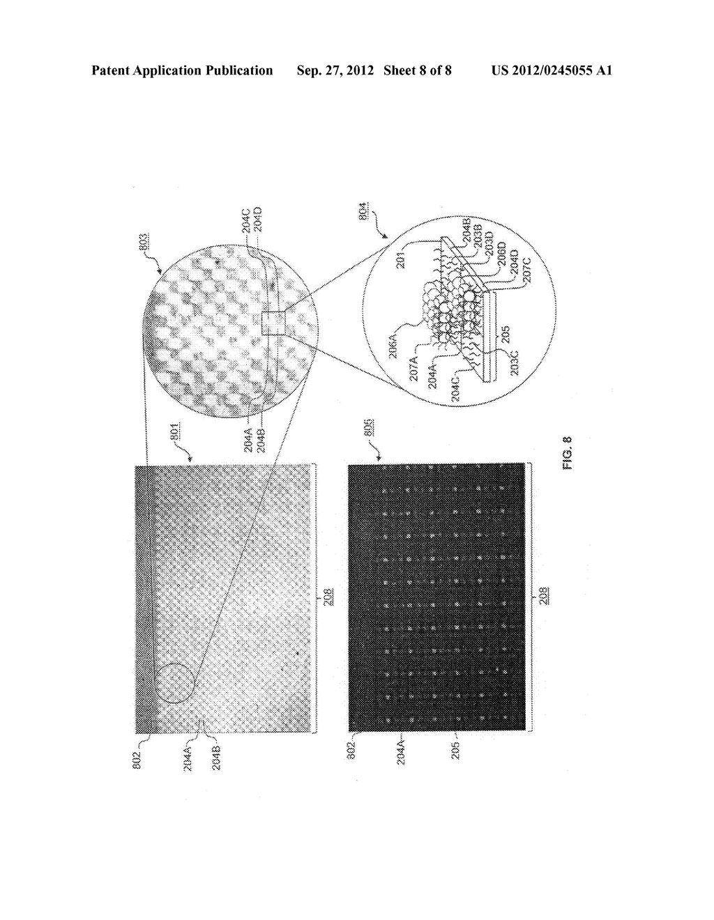 Method for Assembly of Analyte Filter Arrays Using Biomolecules - diagram, schematic, and image 09