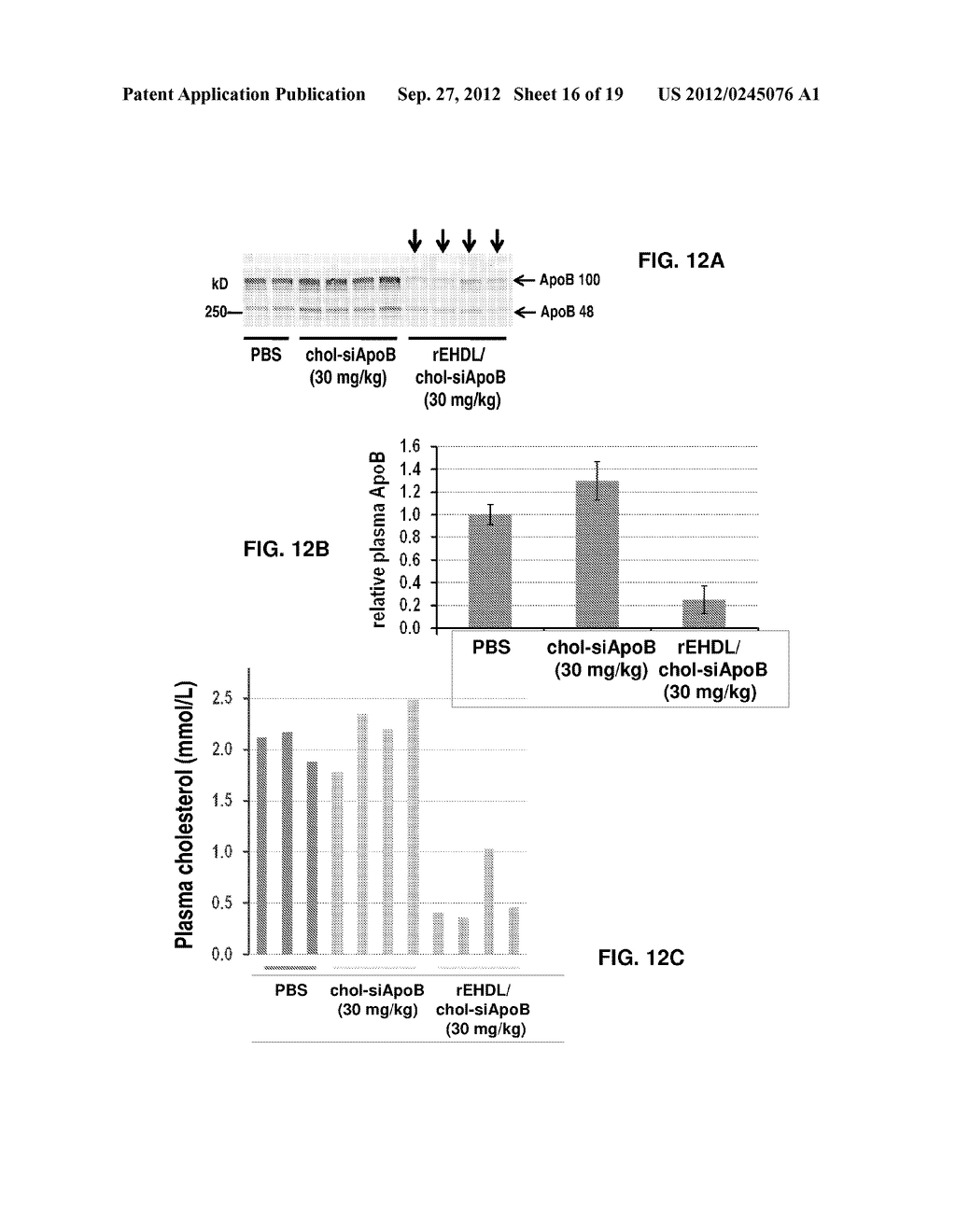 COMPOSITIONS AND METHODS FOR DELIVERING RNAI USING APOE - diagram, schematic, and image 17
