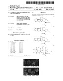 AUTOPHAGY INDUCING COMPOUND AND THE USES THEREOF diagram and image