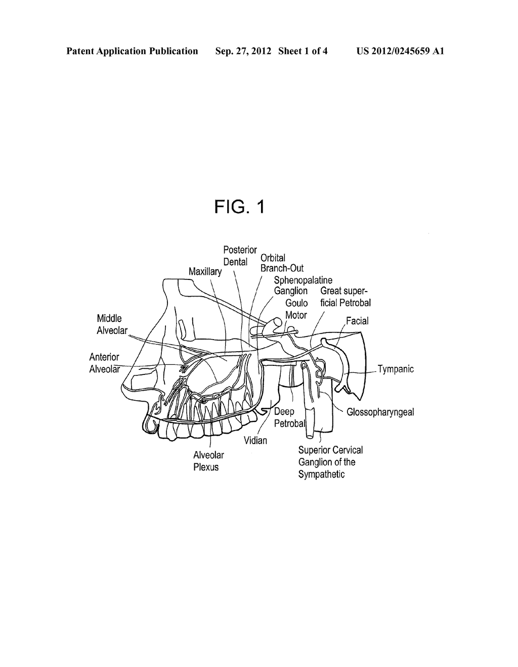SYSTEMS AND METHODS FOR STIMULATION OF NEURONAL ACTIVITY - diagram, schematic, and image 02