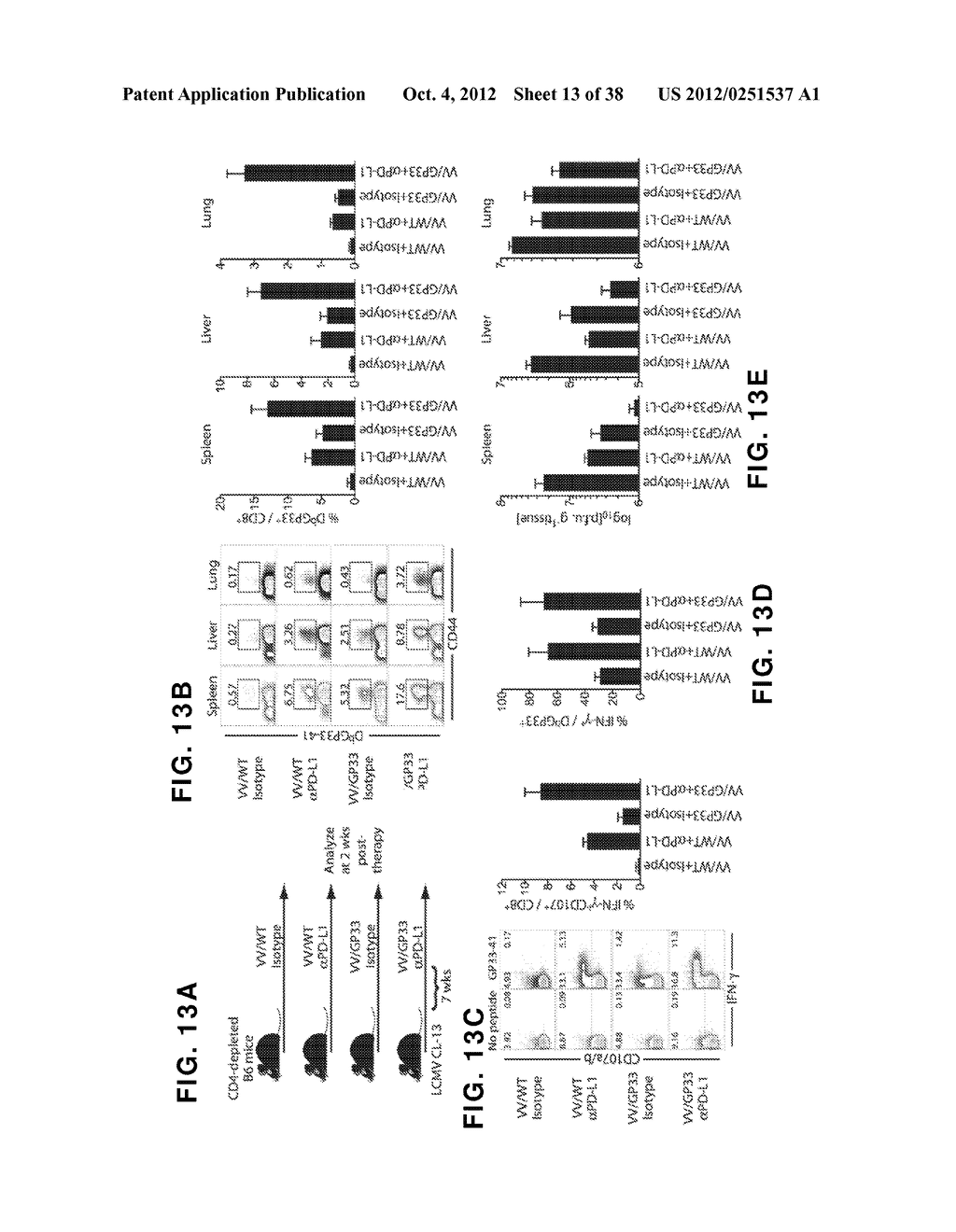 COMPOSITIONS AND METHODS FOR THE TREATMENT OF INFECTIONS AND TUMORS - diagram, schematic, and image 14
