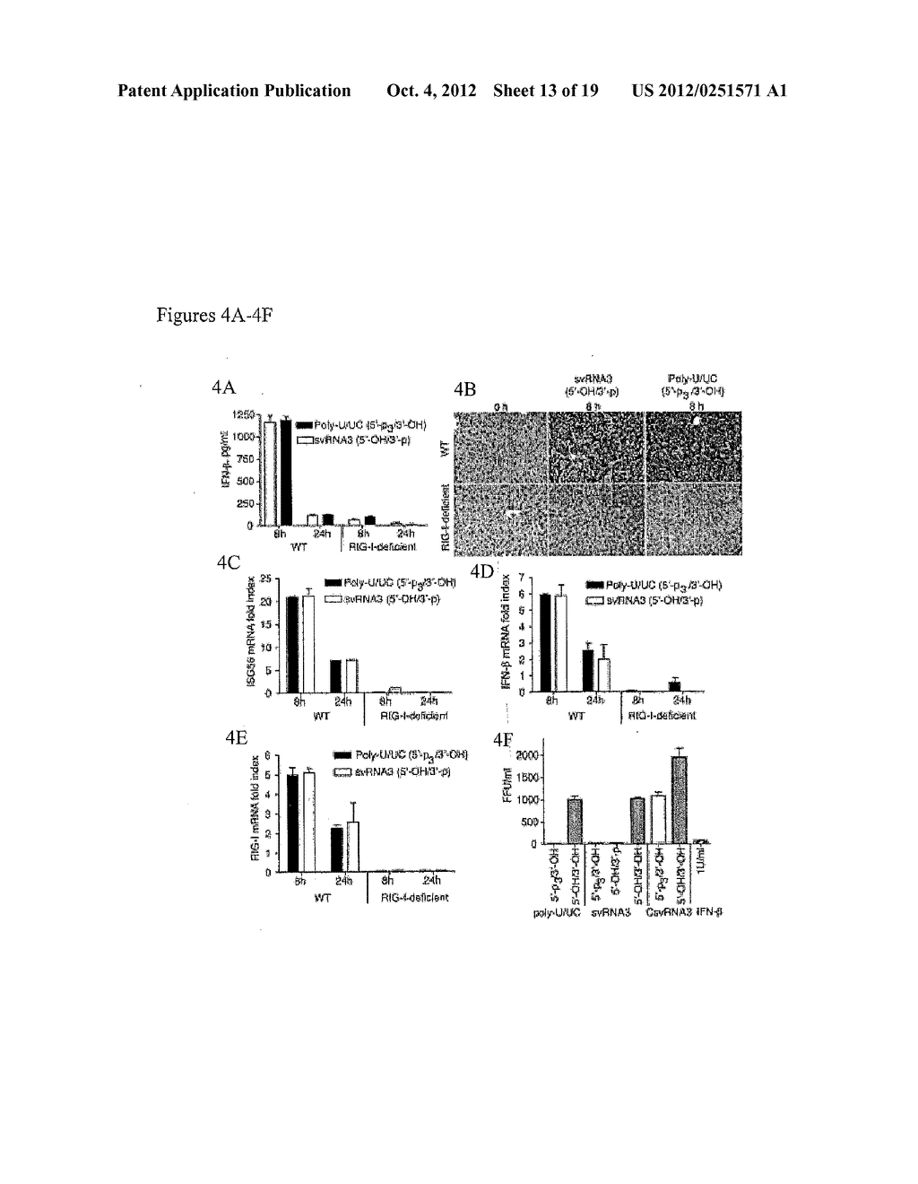 RNASE L-MEDIATED CLEAVAGE PRODUCTS AND USES THEREOF - diagram, schematic, and image 14
