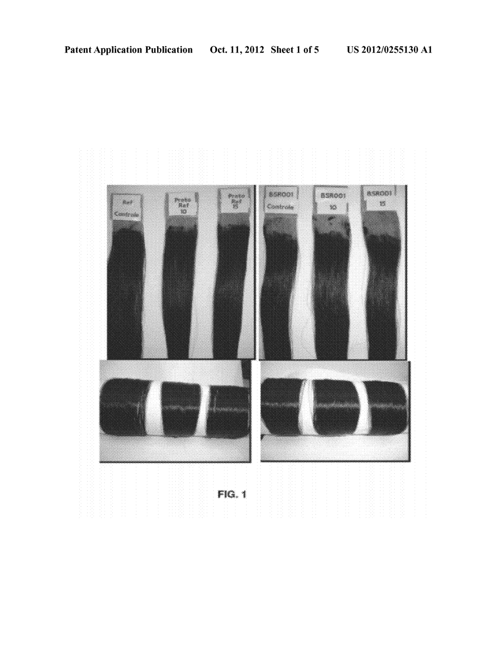 COMPOSITION FOR PERMANENT OR SEMIPERMANENT TINTING OF KERATIN FIBERS WITH     OIL-IN-GLYCOL LAMELLAR GEL - diagram, schematic, and image 02