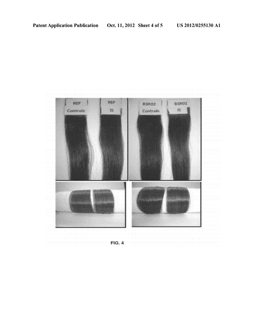 COMPOSITION FOR PERMANENT OR SEMIPERMANENT TINTING OF KERATIN FIBERS WITH     OIL-IN-GLYCOL LAMELLAR GEL - diagram, schematic, and image 05