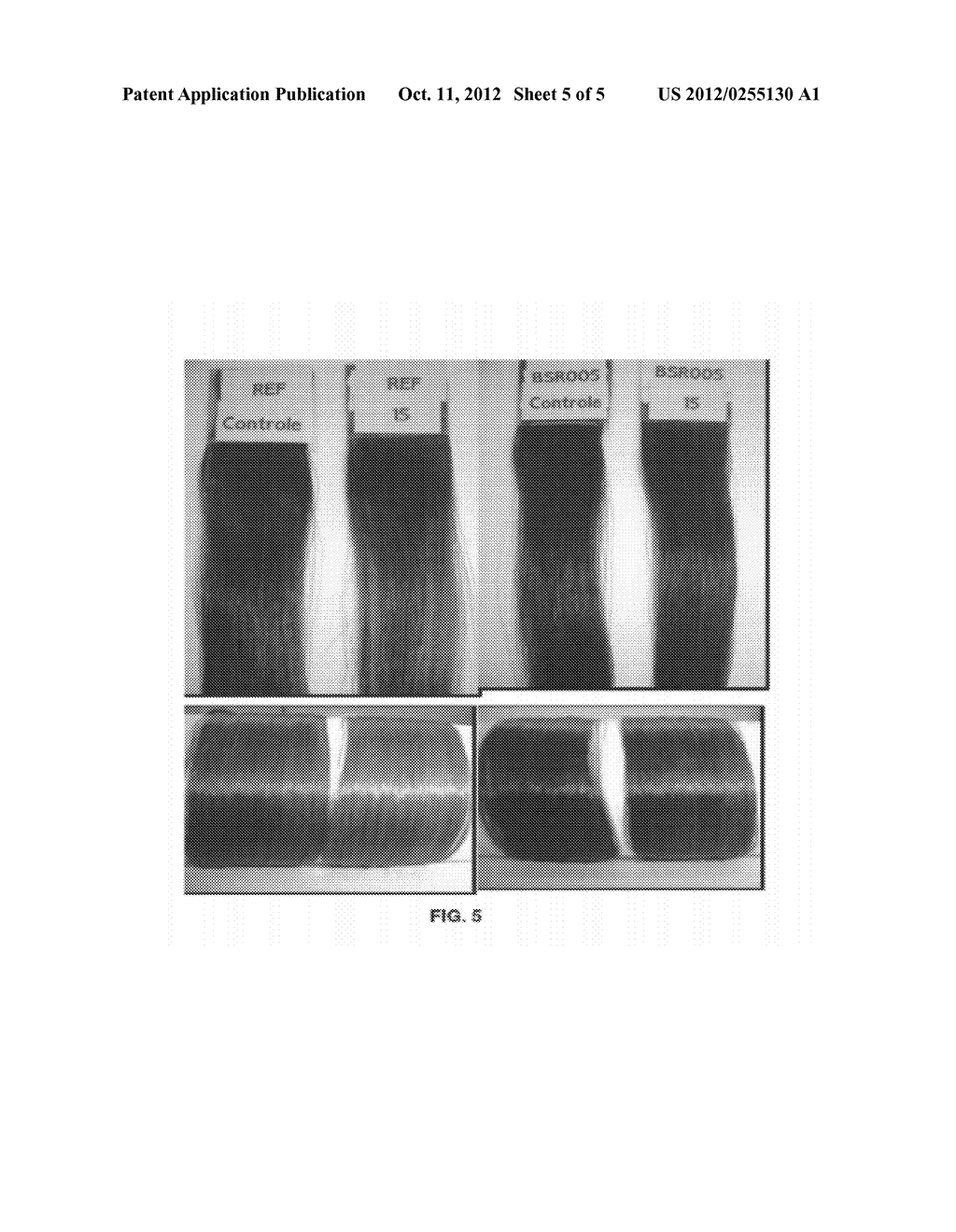 COMPOSITION FOR PERMANENT OR SEMIPERMANENT TINTING OF KERATIN FIBERS WITH     OIL-IN-GLYCOL LAMELLAR GEL - diagram, schematic, and image 06