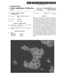FORMULATIONS INCLUDING NANOPARTICLES diagram and image