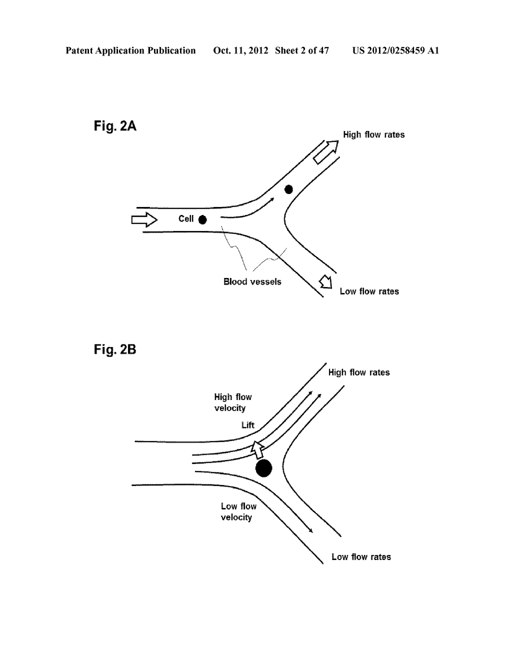 SYSTEM AND METHOD FOR PARTICLE FILTRATION - diagram, schematic, and image 03