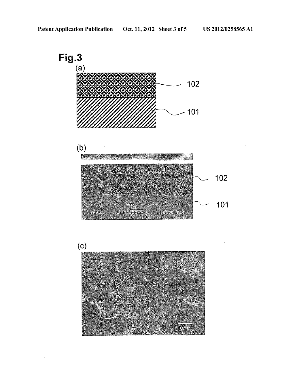 SUBSTRATE PROCESSING APPARATUS AND METHOD FOR FORMING COATING FILM ON     SURFACE OF REACTION TUBE USED FOR THE SUBSTRATE PROCESSING APPARATUS - diagram, schematic, and image 04