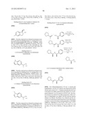 DISUBSTITUTED HETEROARYL-FUSED PYRIDINES diagram and image