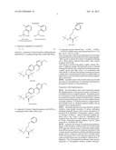 SHORT CHAIN PEPTIDOMIMETICS BASED ORALLY ACTIVE GLP 1 AGONIST AND GLUCAGON     RECEPTOR ANTAGONIST diagram and image