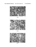 LIQUID CRYSTAL OLIGOMER, SYNTHESIS COMPOSITION, PREPARATION METHOD     THEREOF, AND LIQUID CRYSTAL MATERIAL diagram and image