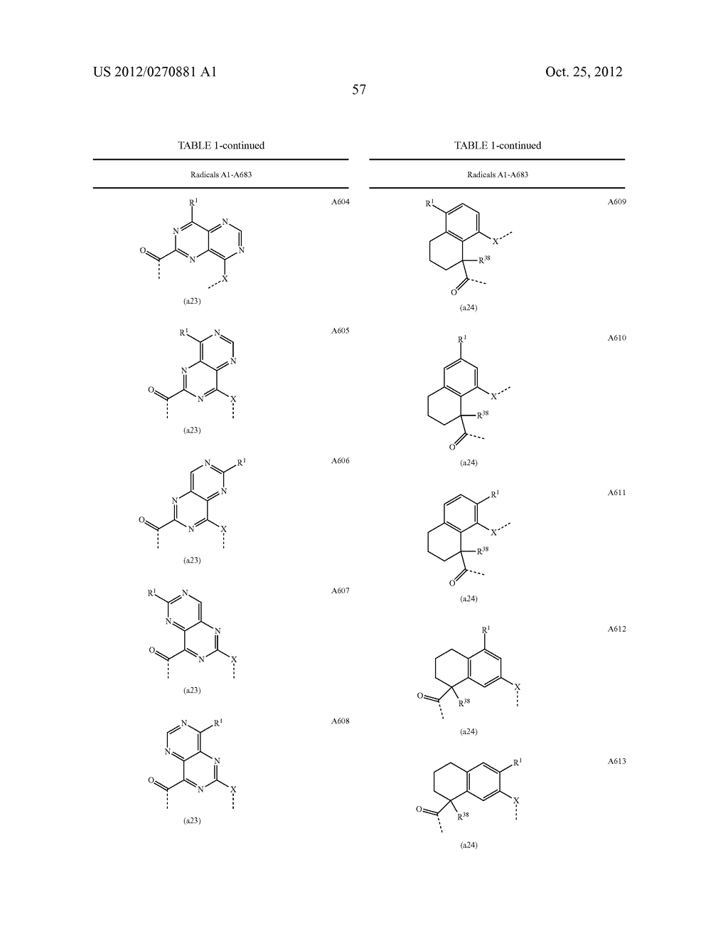 CONFORMATIONALLY CONSTRAINED, FULLY SYNTHETIC MACROCYCLIC COMPOUNDS - diagram, schematic, and image 60