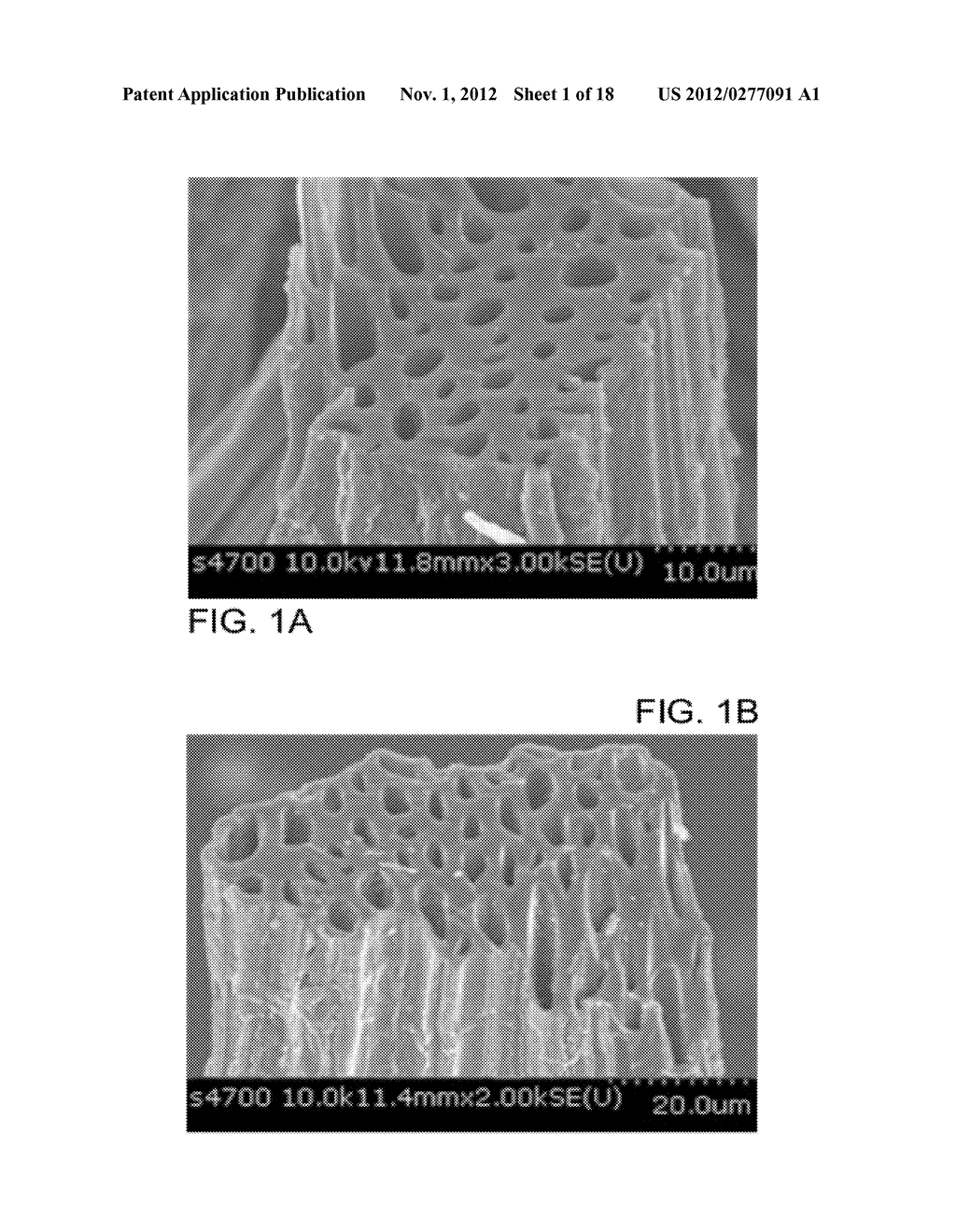Method of Preparing Catalyst Using Alkali Metal or Alkaline Earth Metal in     Natural Cellulose Fibers as Co-Catalyst and Dispersant - diagram, schematic, and image 02