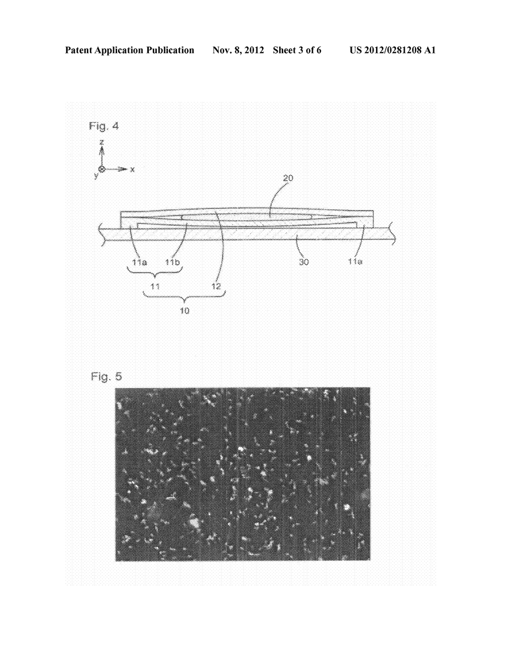 CHAMBER FOR OPTICAL OBSERVATION, METHOD FOR OPTICALLY OBSERVING SAMPLE,     AND METHOD FOR MANUFACTURING LOWER TRANSPARENT PLATE - diagram, schematic, and image 04