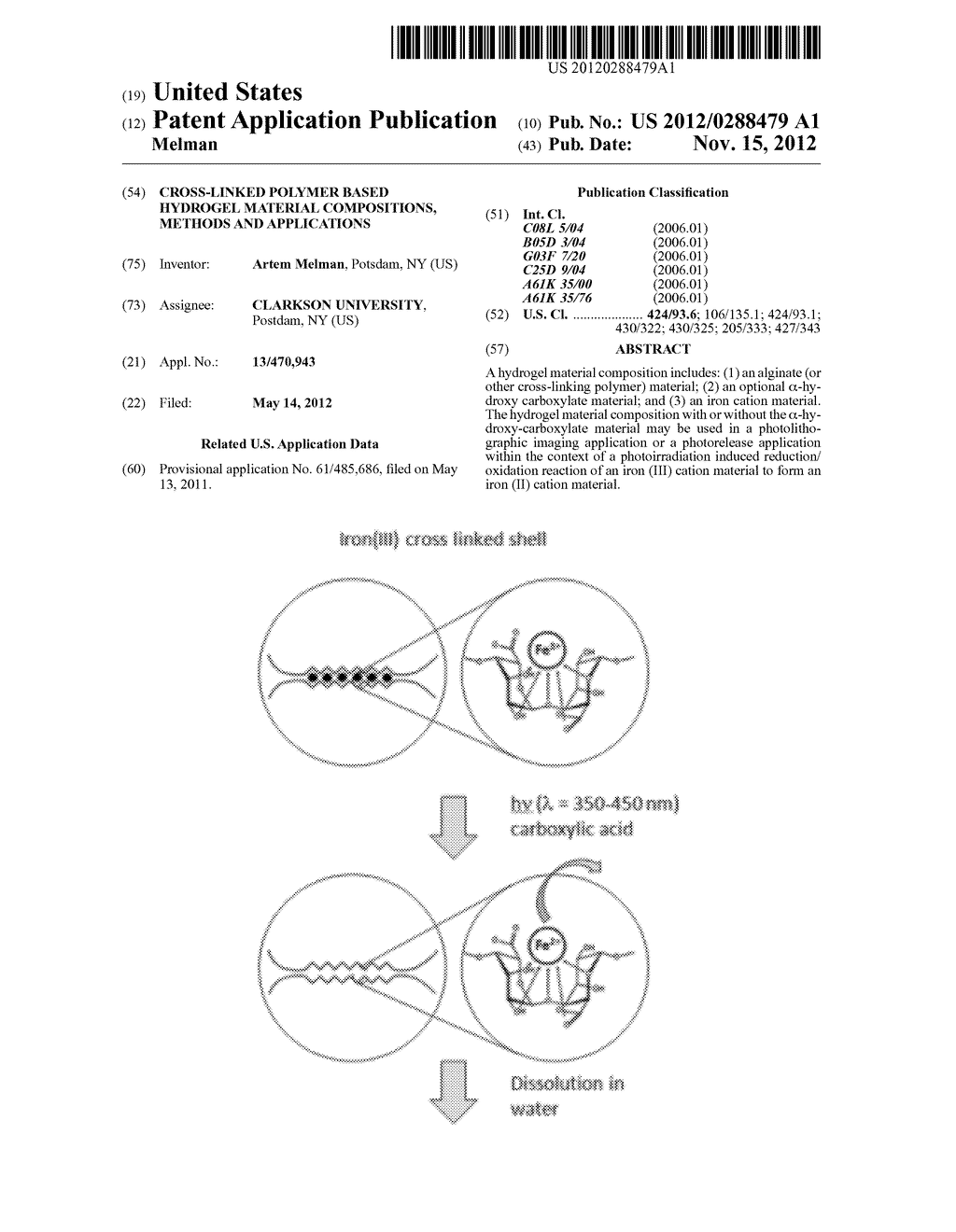 Cross-Linked Polymer Based Hydrogel Material Compositions, Methods and     Applications - diagram, schematic, and image 01