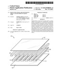 RESIN PANELS WITH LARGE DECORATIVE OBJECTS AND METHODS OF MAKING SAME diagram and image