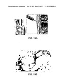 METHODS FOR DEVELOPING AND ASSESSING THERAPEUTIC AGENTS diagram and image