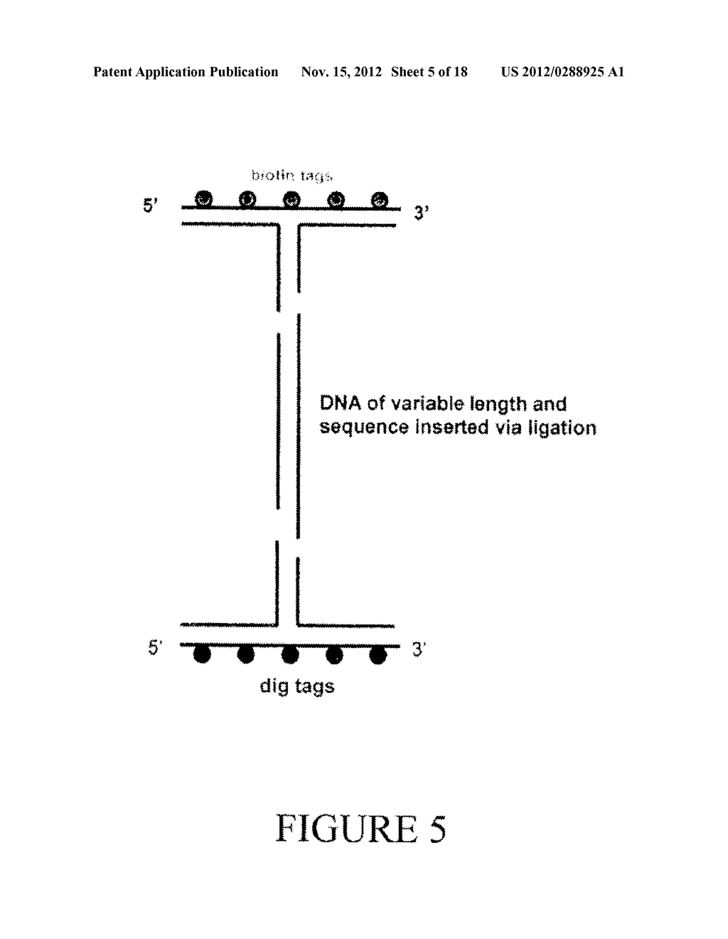 OPTICAL TRAPPING PARTICLES, ANGULAR OPTICAL TRAP SYSTEMS, METHODS OF     MAKING, AND METHODS OF USE - diagram, schematic, and image 06