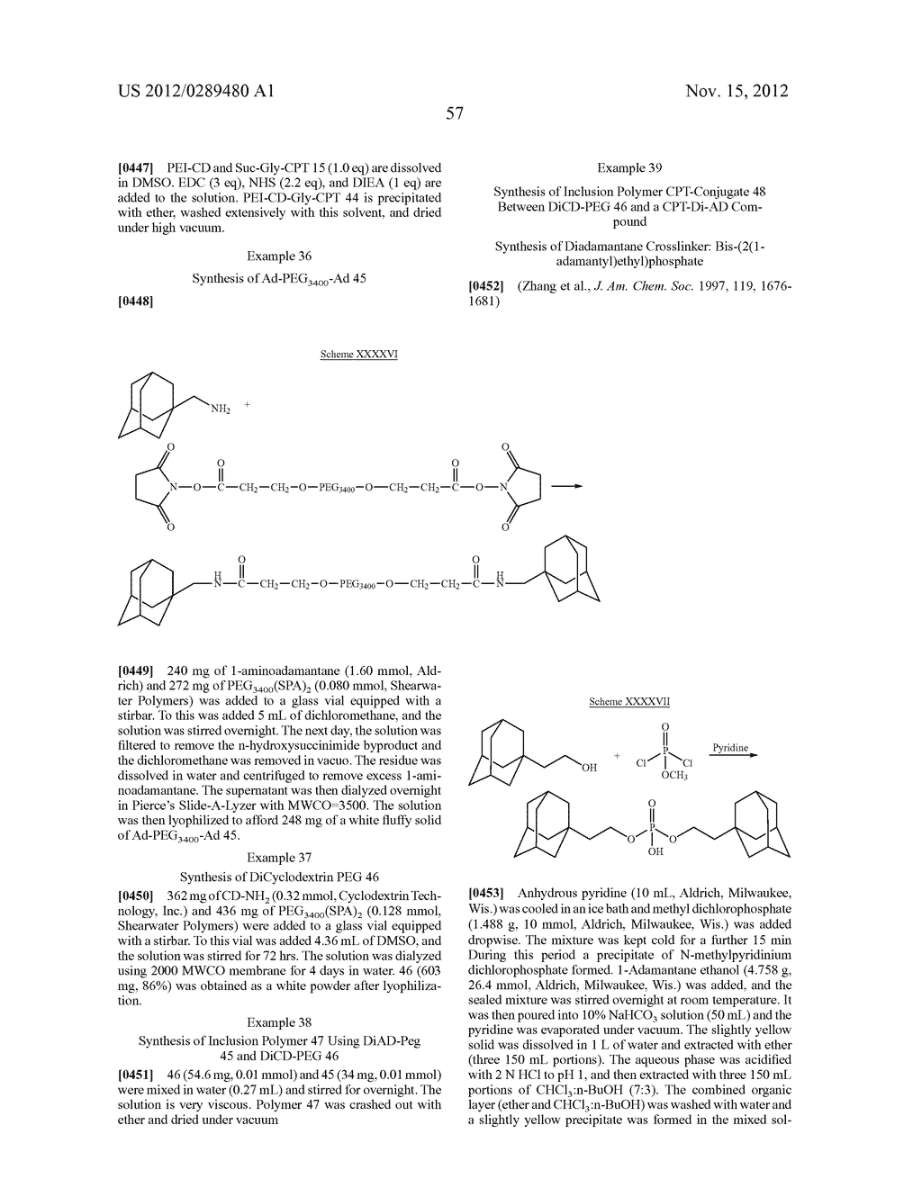CYCLODEXTRIN-BASED POLYMERS FOR THERAPEUTICS DELIVERY - diagram, schematic, and image 69