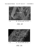 ONE-DIMENSIONAL METAL NANOSTRUCTURES diagram and image