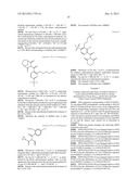 MUTANT HYDROXYPHENYLPYRUVATE DIOXYGENASE POLYPEPTIDES AND METHODS OF USE diagram and image