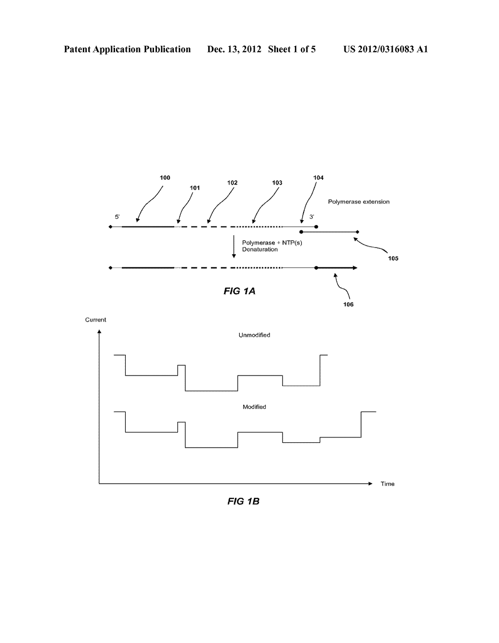Methods of Detecting Target Nucleic Acids - diagram, schematic, and image 02
