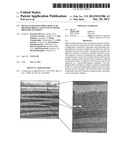 METAL-COATED POLYMER ARTICLE OF HIGH DURABILITY AND VACUUM AND/OR PRESSURE     INTEGRITY diagram and image