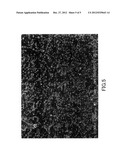 NOBLE METAL FINE PARTICLE SUPPORTED CATALYST AND METHOD FOR PRODUCING THE     CATALYST, AND PURIFYING CATALYST diagram and image