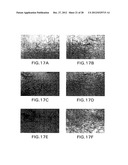 GLP-1, EXENDIN-4, PEPTIDE ANALOGS AND USES THEREOF diagram and image
