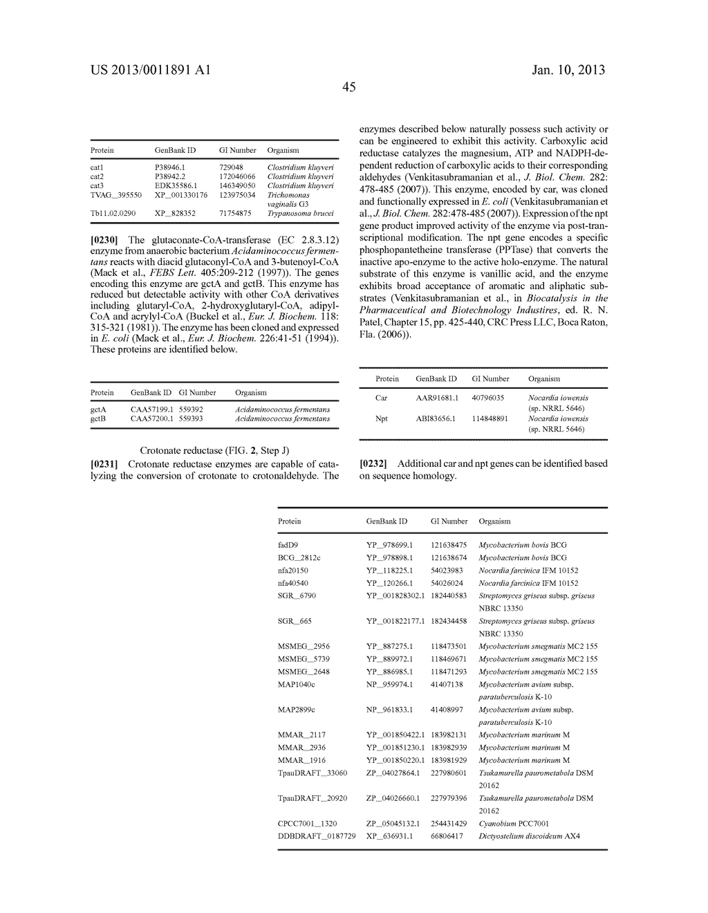 MICROORGANISMS FOR PRODUCING BUTADIENE AND METHODS RELATED THERETO - diagram, schematic, and image 70