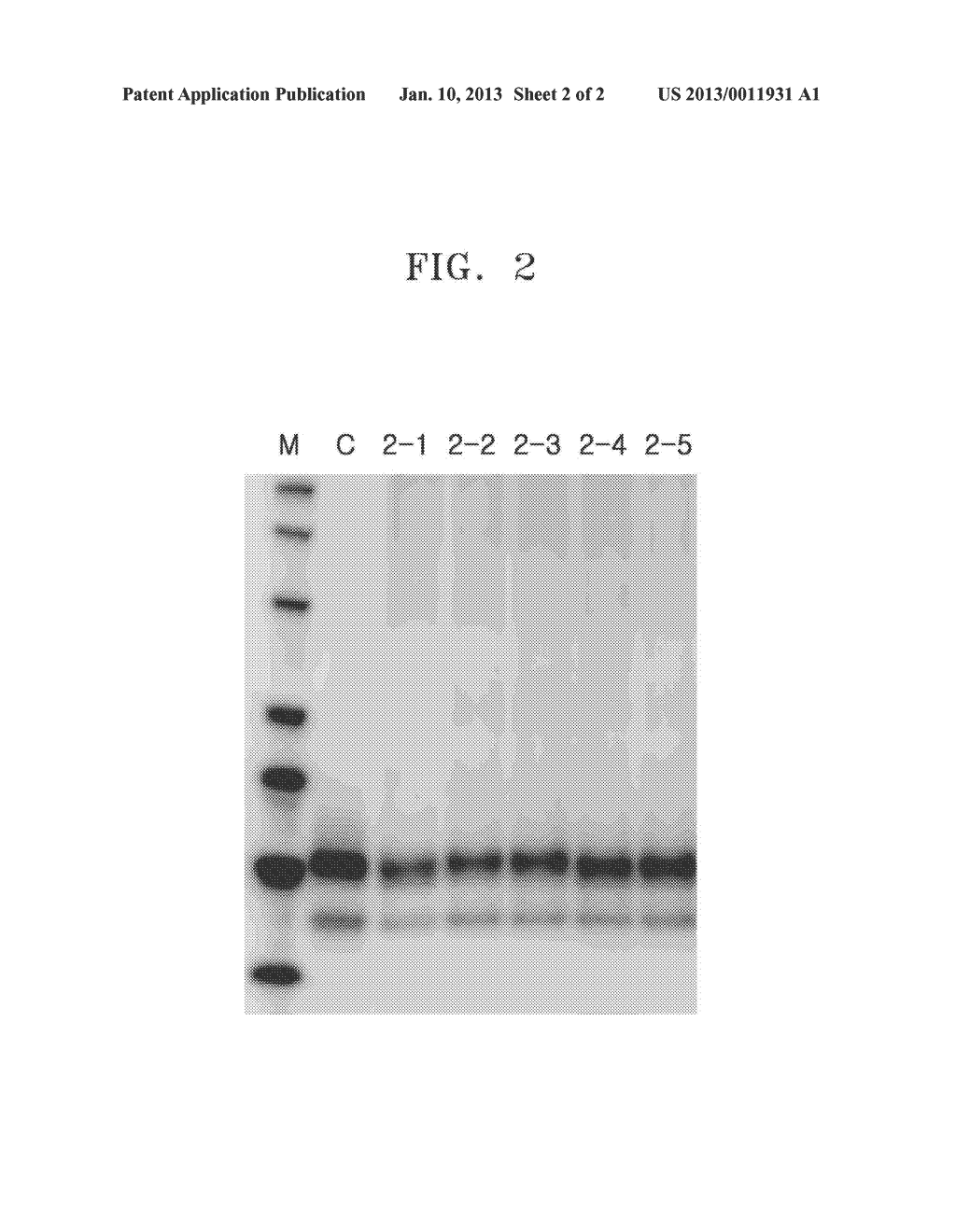 POLYMER INCLUDING GROUP HAVING AT LEAST TWO HYDROXYLS OR ZWITTERIONIC     GROUP AND USE THEREOF - diagram, schematic, and image 03