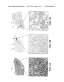 Generating Artificial Hyperspectral Images Using Correlated Analysis of     Co-Registered Images diagram and image