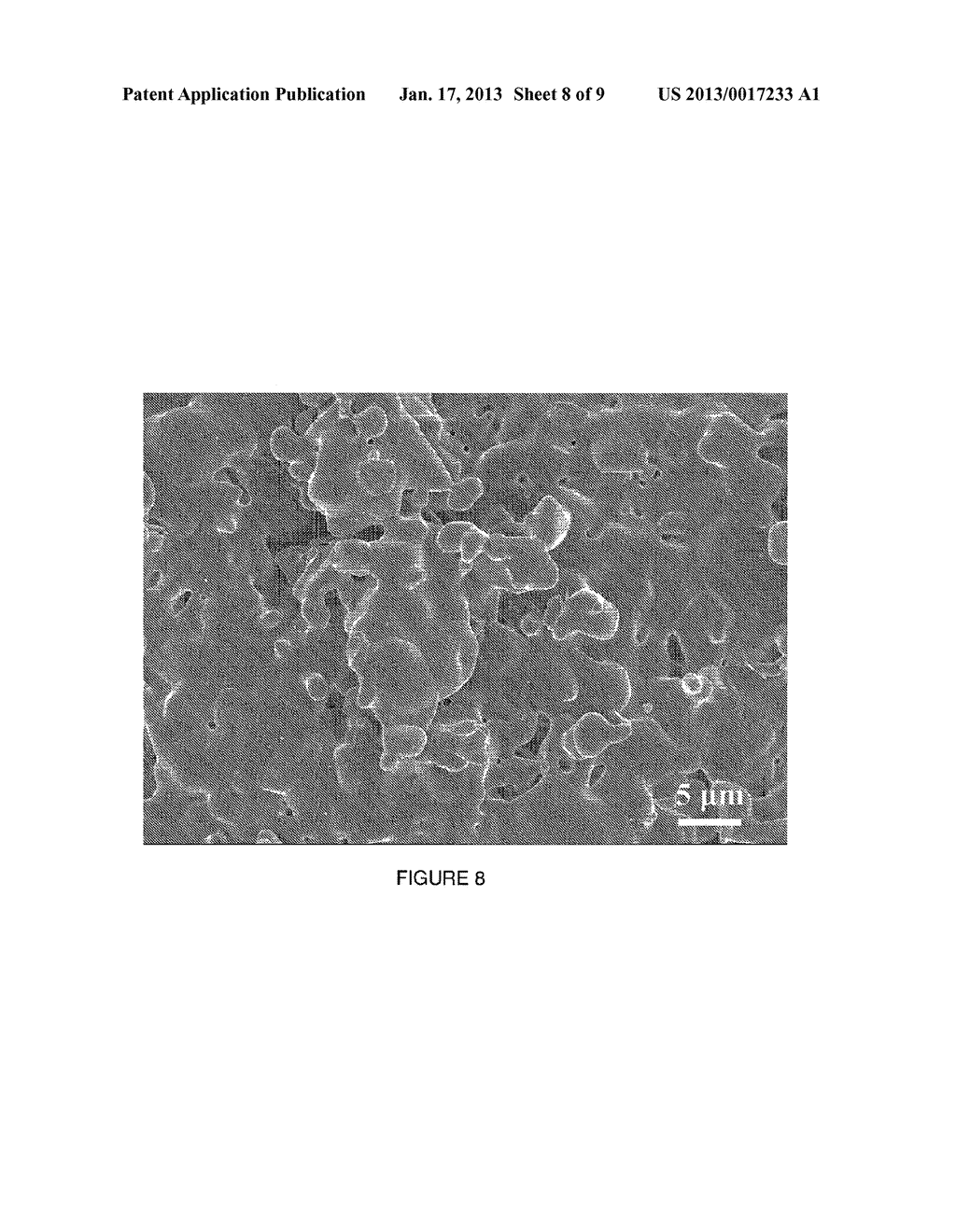 Tricalcium Phosphate Coarse Particle Compositions and Methods for Making     the Same - diagram, schematic, and image 09