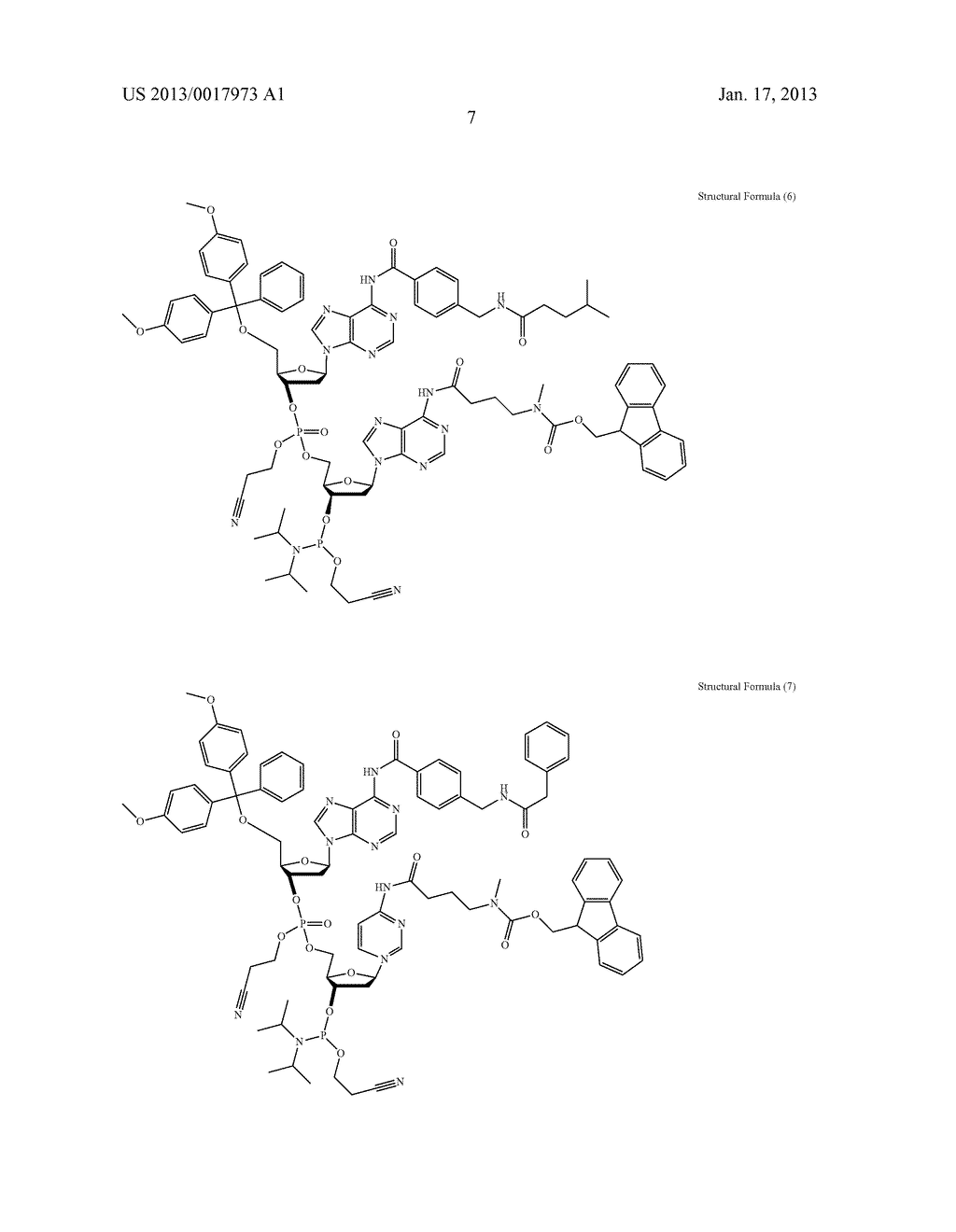 FUNCTIONAL MOLECULE, FUNCTIONAL MOLECULE SYNTHESIZING AMIDITE AND TARGET     SUBSTANCE ANALYSIS METHOD - diagram, schematic, and image 57