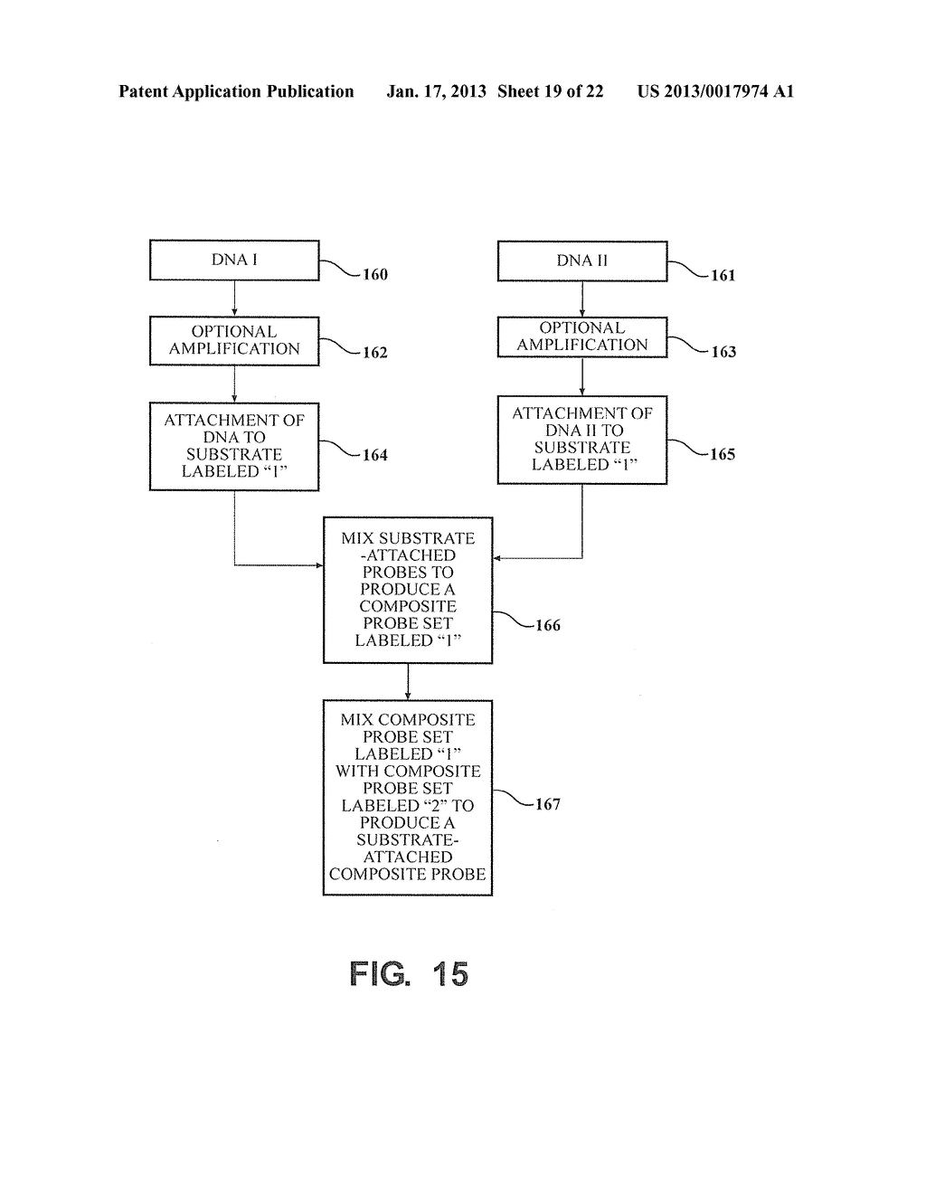 METHODS AND COMPOSITIONS RELATING TO MULTIPLEX GENOMIC GAIN AND LOSS     ASSAYS - diagram, schematic, and image 20