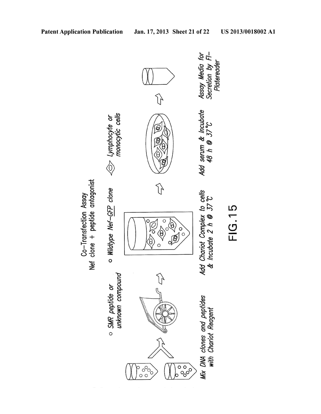 COMPOSITIONS AND METHODS FOR TREATING AIDS OR CANCER BY INHIBITING THE     SECRETION OF MICROPARTICLES - diagram, schematic, and image 22