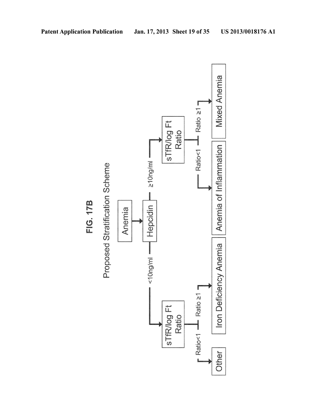 METHODS OF PRODUCING HYBRIDOMAS AND MONOCLONAL ANTIBODIES AND ANTIBODIES     PRODUCED THEREBY - diagram, schematic, and image 20