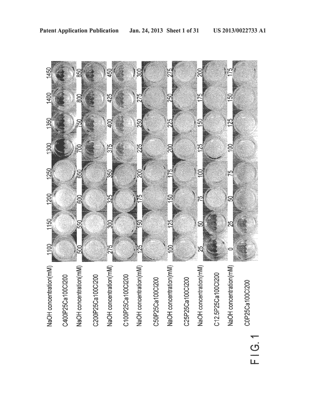 CALCIUM PREPARATION AND METHOD OF PRODUCTION THEREOF - diagram, schematic, and image 02