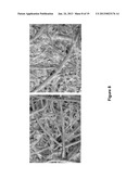 NON-WOVEN FABRIC COMPOSITES FROM COIR FIBERS diagram and image