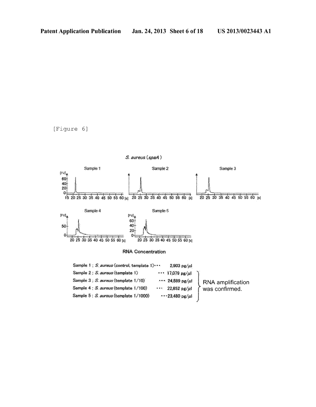 METHOD FOR DETECTING PNEUMONIA CAUSATIVE BACTERIA USING NUCLEIC ACID     CHROMATOGRAPHY - diagram, schematic, and image 07