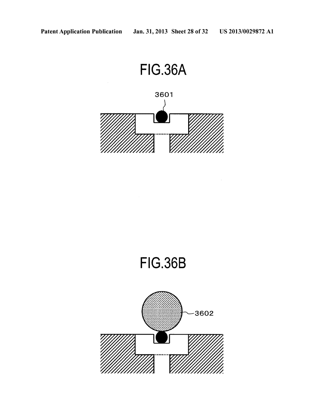 ARRAY FOR DETECTING BIOLOGICAL SUBSTANCE, ASSAY SYSTEM AND ASSAY METHOD - diagram, schematic, and image 29