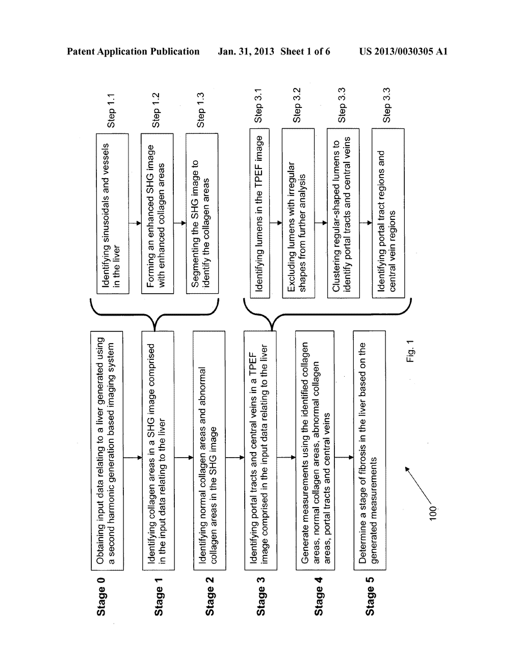 METHOD AND SYSTEM FOR DETERMINING A STAGE OF FIBROSIS IN A LIVER - diagram, schematic, and image 02