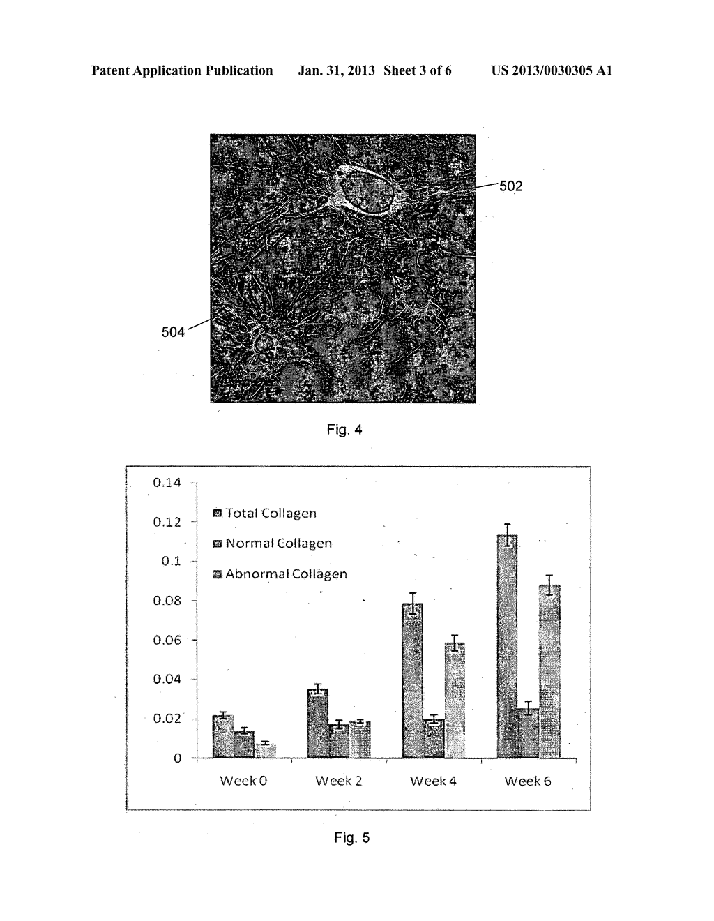 METHOD AND SYSTEM FOR DETERMINING A STAGE OF FIBROSIS IN A LIVER - diagram, schematic, and image 04