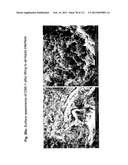 ISOLATION AND CULTIVATION OF STEM/PROGENITOR CELLS FROM THE AMNIOTIC     MEMBRANE OF UMBILICAL CORD AND USES OF CELLS DIFFERENTIATED THEREFROM diagram and image