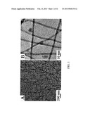 ULTRATHIN NANOWIRE-BASED AND NANOSCALE HETEROSTRUCTURE BASED     THERMOELECTRIC CONVERSION STRUCTURES AND METHOD OF MAKING THE SAME diagram and image