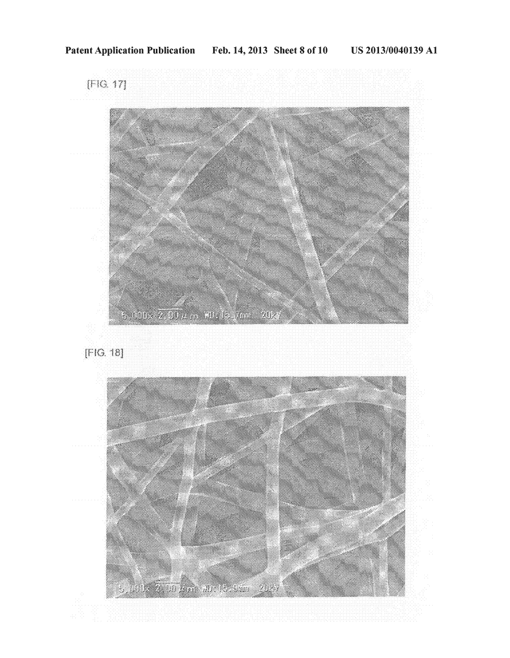 SURFACE-MODIFIED FINE FIBERS - diagram, schematic, and image 09