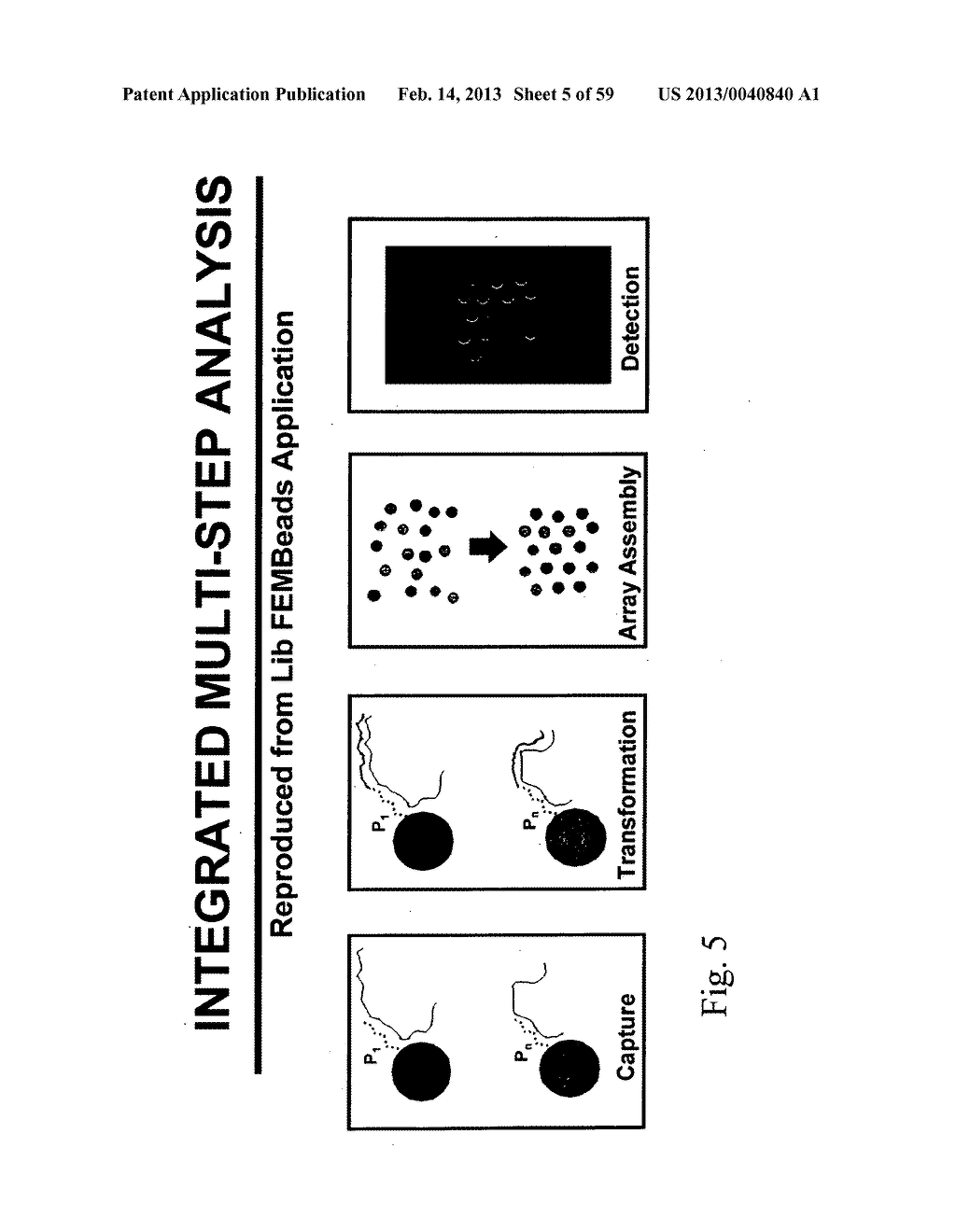 NUCLEIC ACID AMPLIFICATION WITH INTEGRATED MULTIPLEX DETECTION - diagram, schematic, and image 06
