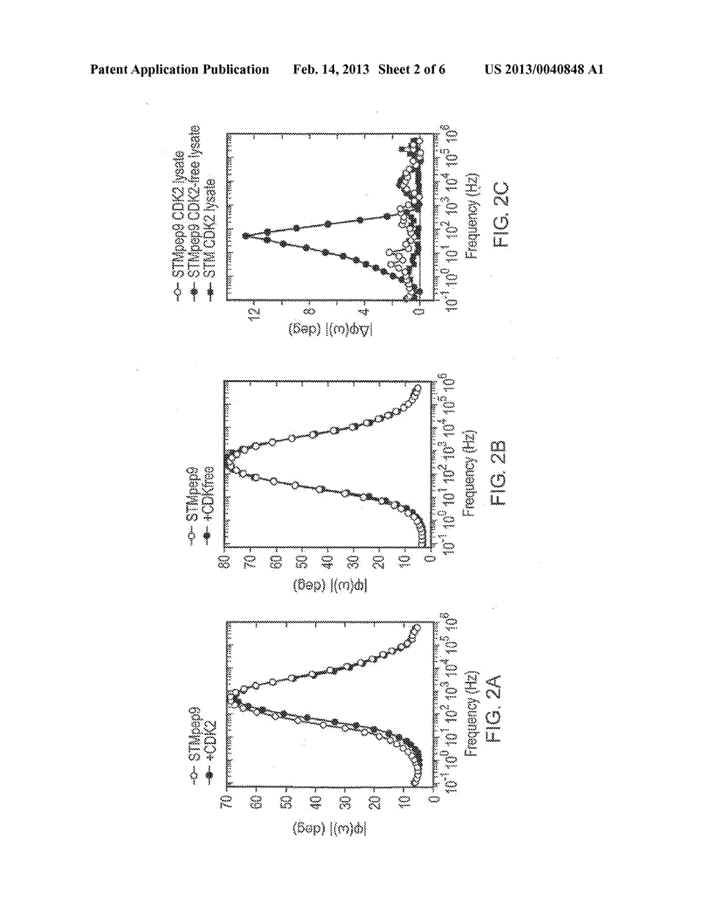 Methods and Devices for Detecting Structural Changes in a Molecule     Measuring Electrochemical Impedance - diagram, schematic, and image 03